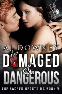 Book 6- Damaged & Dangerous
